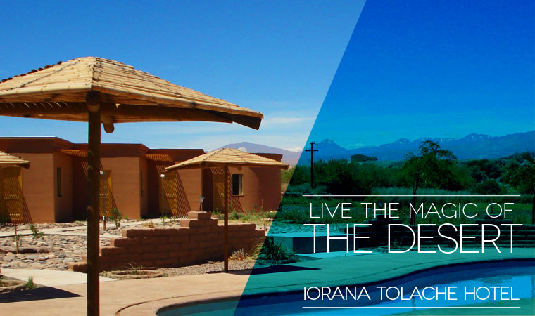 Live the magic of the desert on IORANA TOLACHE HOTEL